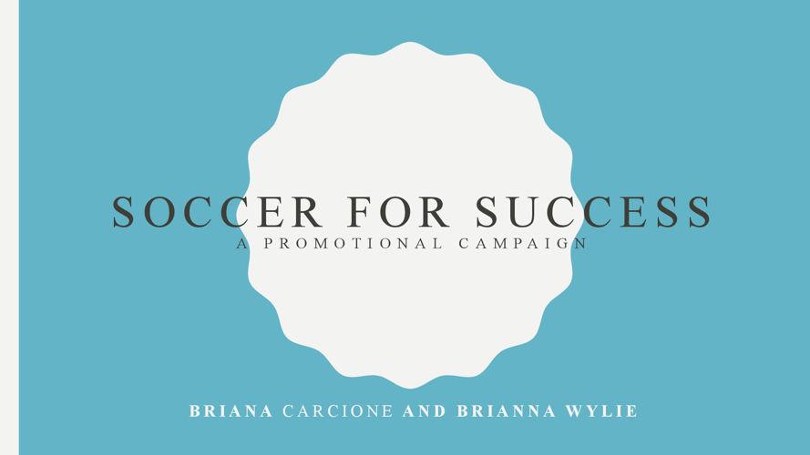 Briana Carcione and Brianna Wylie Capstone Portfolio
