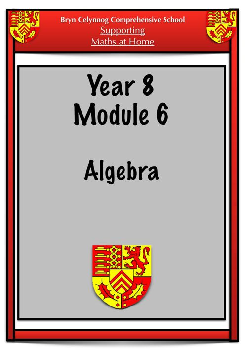 Year 8 Module 6 Booklet PDF