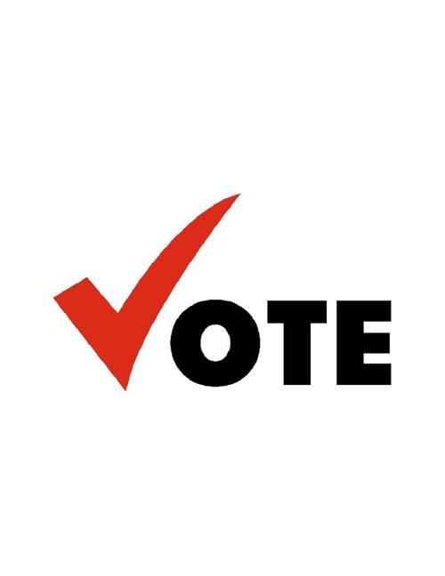 Iowa Voting Manual