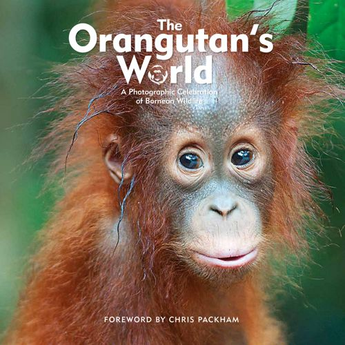 The Orangutan's World