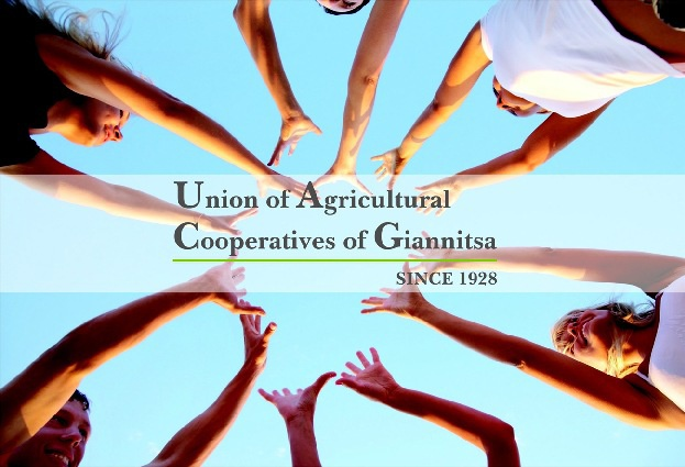 Union of Agricultural Cooperatives of Giannitsa