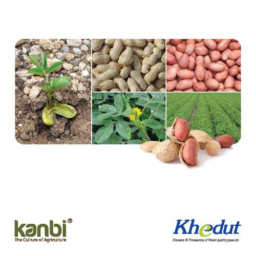 Kanbi