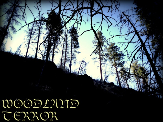 Woodland Terror - part one