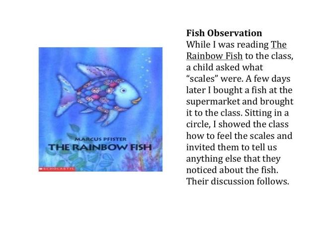 FISH STORY FLIP