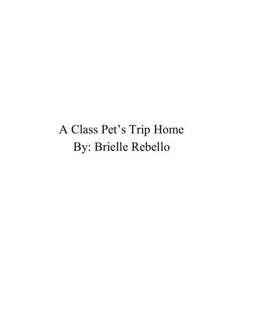 BRIELLEscompletebook2 (1)