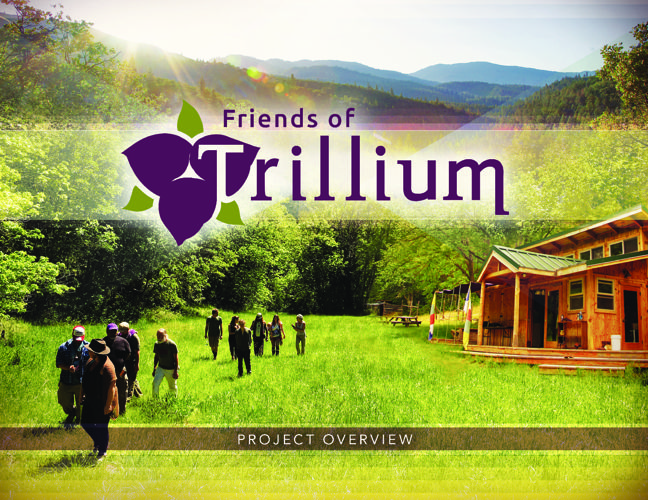 Friends Of Trillium Project Overview
