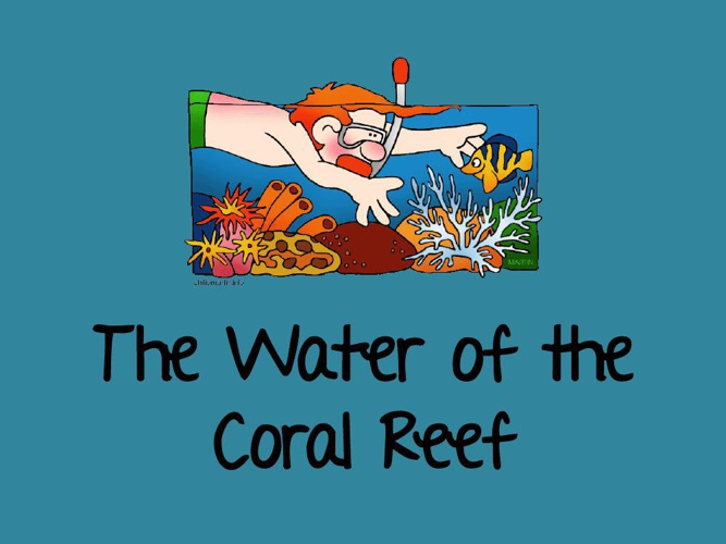 The Water of the Coral Reef