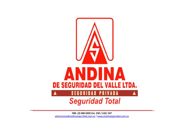 Andina De Seguridad Del Valle LTDA.