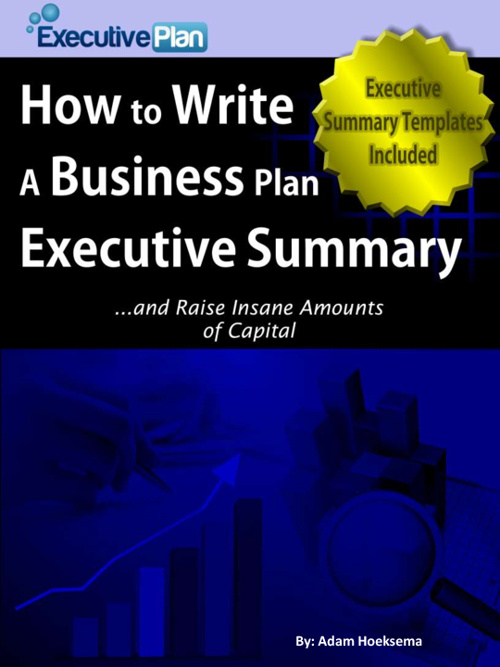 How to Write a Business Plan Executive Summary eBook