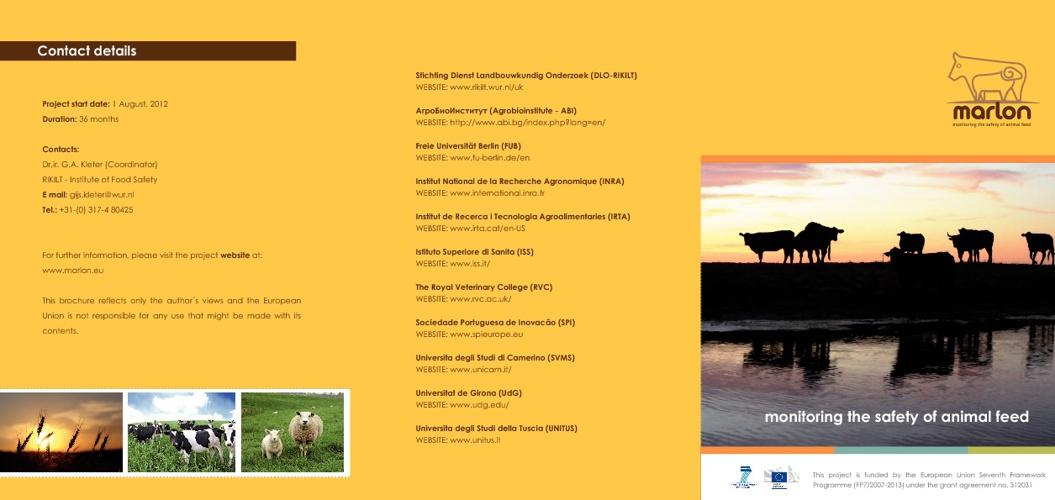Marlon Brochure - 1 version
