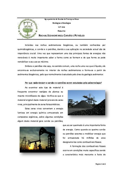 11º Ano - Carvão e Petróleo