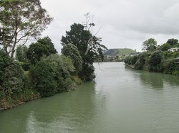 Exploring the Tamaki River