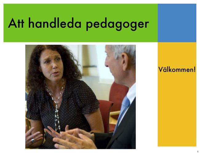 Att handleda pedagoger - bildspel från kursen