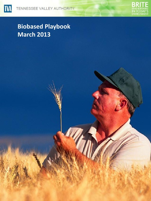 Biobased Playbook Feb 2013