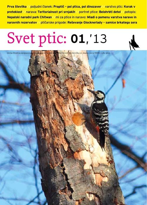 Svet ptic 01'13