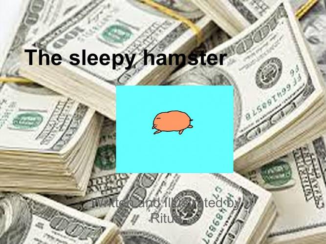 The Sleepy Hamster by Ritua