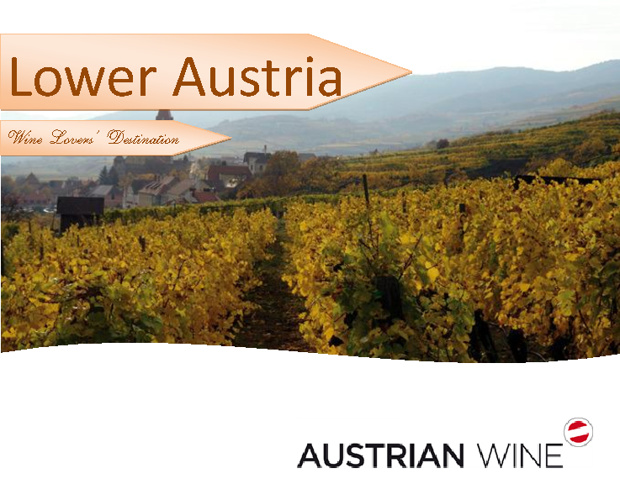 Lower Austria-Wine Lovers' Destination