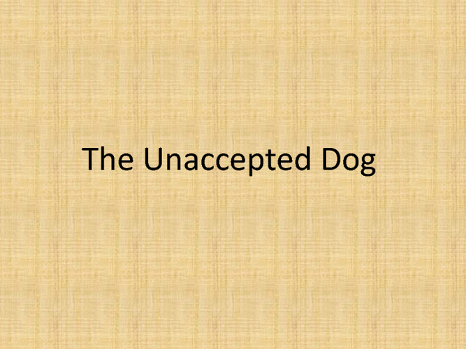 The unaccepted dog