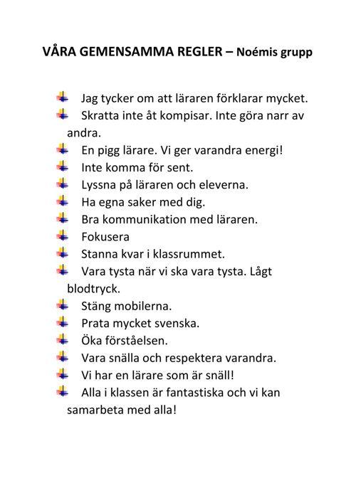 VÅRA GEMENSAMMA REGLER