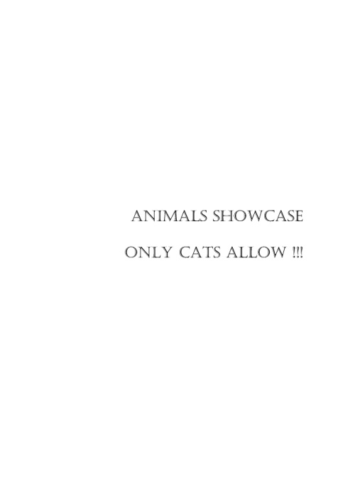 Animals Showcase