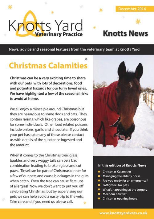 Knotts Yard December Newsletter 2016