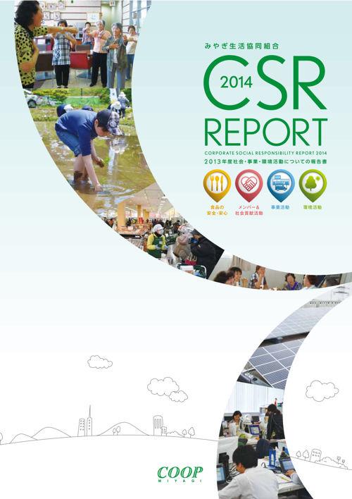CSR_REPORT1