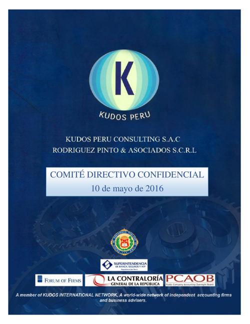 COMITÉ DIRECTIVO GRUPO KUDOS 052016