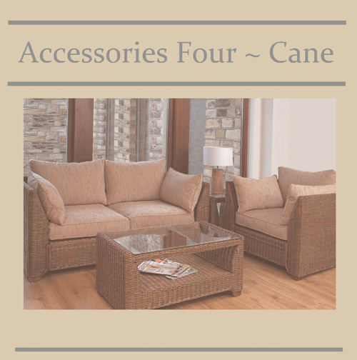 Accessories Four ~ Cane