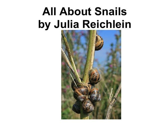Julia's snail book