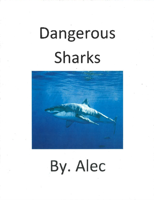 Sharks by. Alec