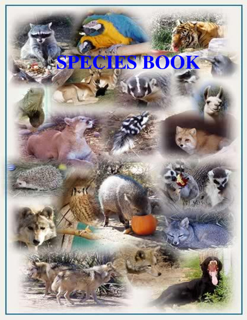 Species Book by Hilmarie Javier