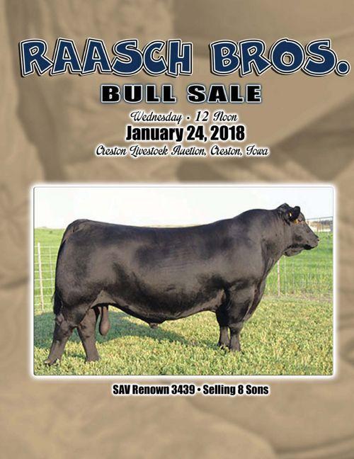 Raasch Bros. Bull Sale
