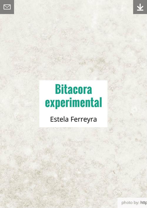 bitacora experimental estela