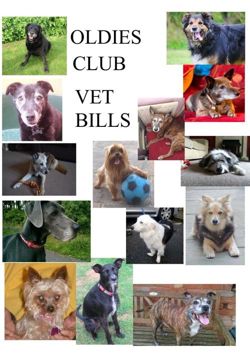 Oldies Club Vet Bills final copy