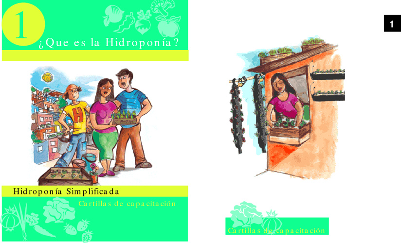 Para averiguar sobre Hidroponia...