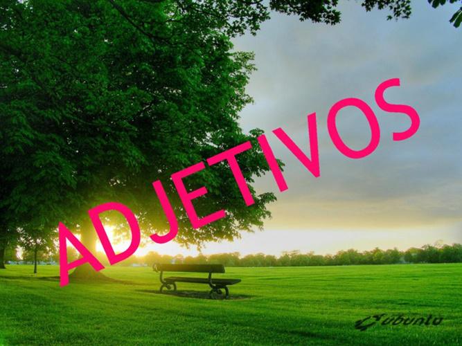 R.LENGUA LOS ADJETIVOS