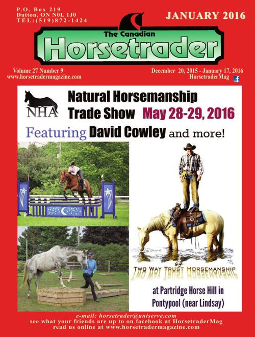 Horsetrader Magazine January 2016