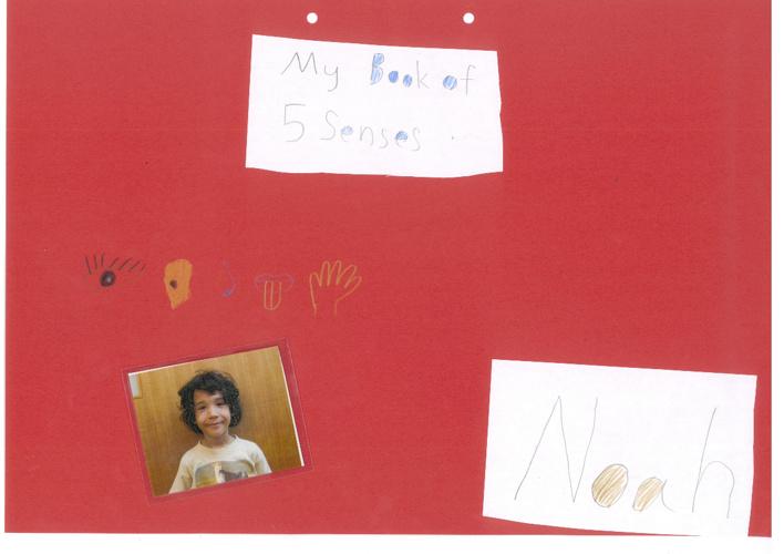 NoahSensesBook