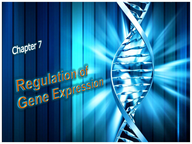 7. Regulation of Gene Expression