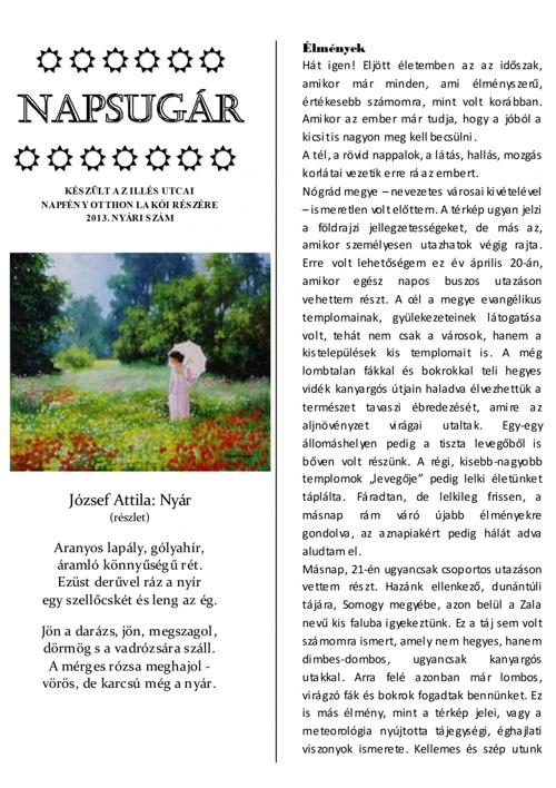 Napsugár újság - 2013 nyári szám