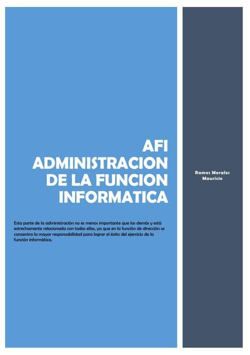 AFI Administración de la Función de Informática