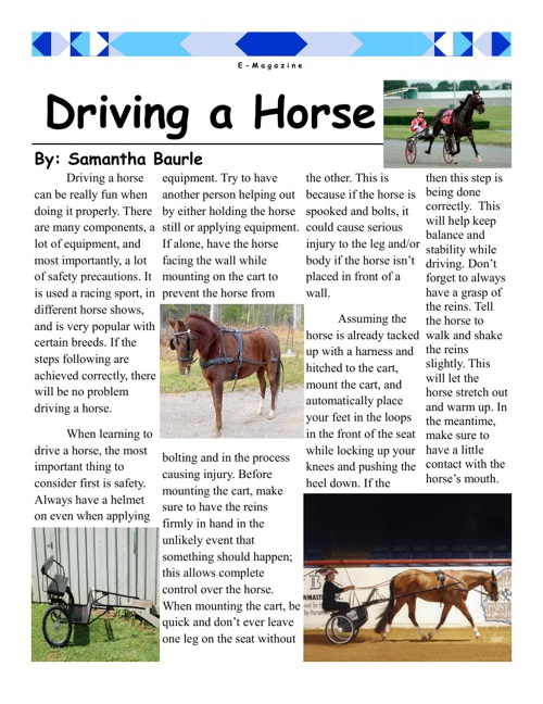 Driving a Horse