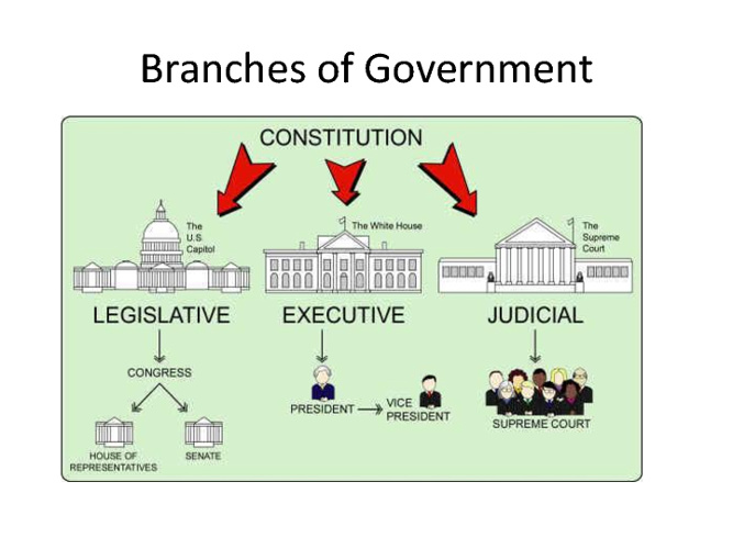 Branches of Government Breakdown