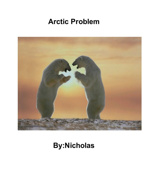 Arctic Problem - Nicky