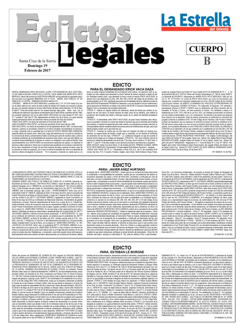 Judiciales 19 domingo - febrero 2017
