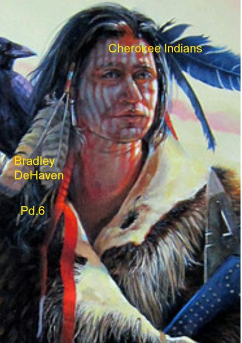 Cherokee indian project