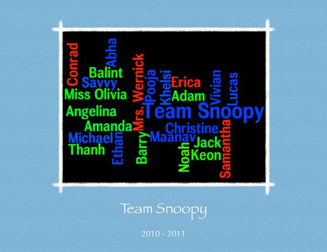 Team Snoopy 2010-2011