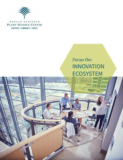 Focus On- INNOVATION ECOSYSTEM