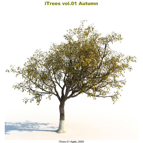 03_ITREES  VOL.01 AUTUMN