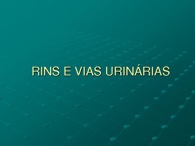 Rins e Vias urinárias